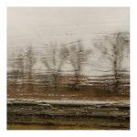 Zdjęcie, nagie drzewa za deszczową szybą, fot. Dorota Raczyńska